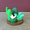 cactus_collection
