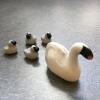 swan_goslings