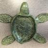 turtle_dish